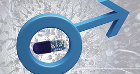 Ученые готовят к выходу на широкий рынок мужское средство контрацепции
