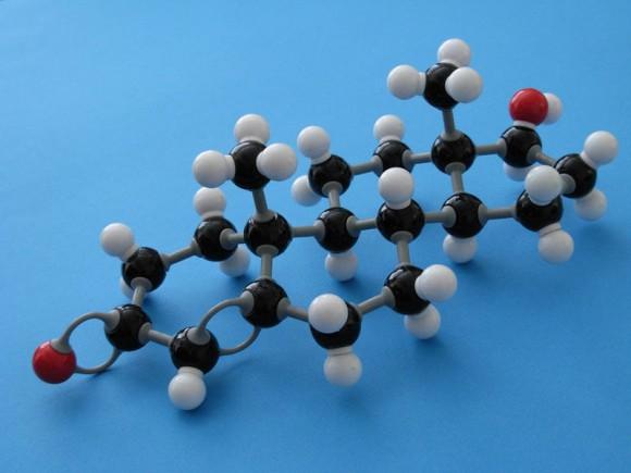 Фталаты снижают уровень тестостерона