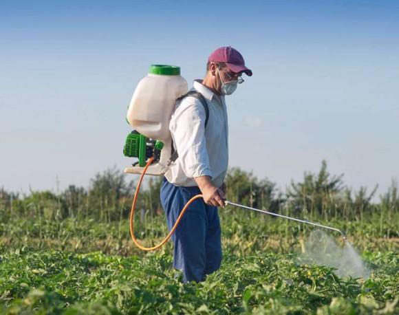 Пестициды значительно снижают качество мужской спермы
