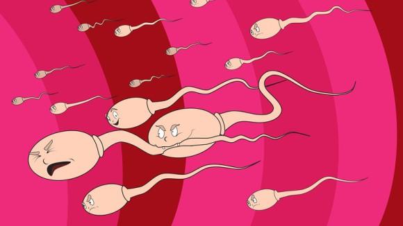 Восемнадцатилетних англичан призывают заморозить свою сперму