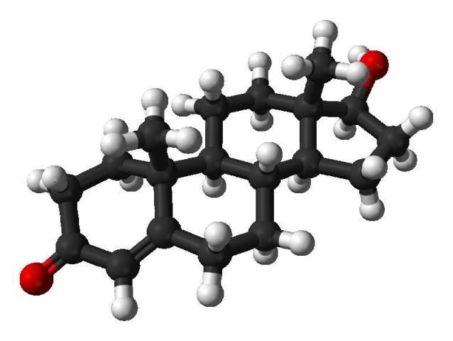 Что такое тестостерон и как он действует