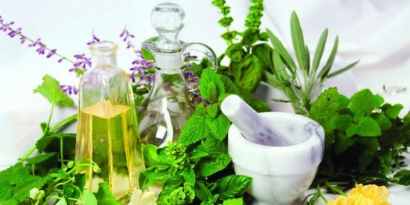 Лечебные свойства крапивы при нарушении эректильной функции