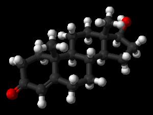 Тестостерон спасает мужчин от преждевременной смерти