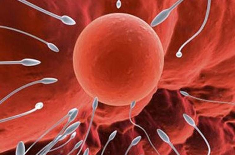 Обнаружен мужской ген бесплодия
