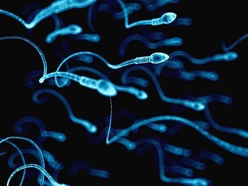 Контрацептивы для мужчин могут появиться в аптеках в 2021 году