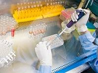 Клеточная терапия спасет от эректильной дисфункции