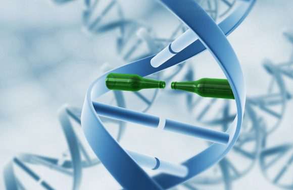 Тяга к алкоголю и никотину кодируется древними генами