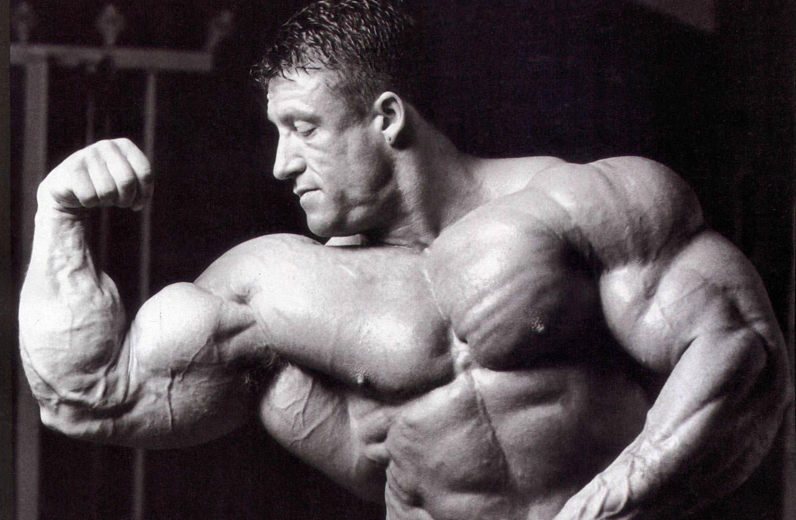 Открыт ген, заставляющий расти мускулы