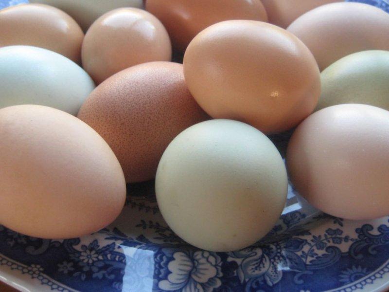 Куриные яйца очень полезны для мужчин