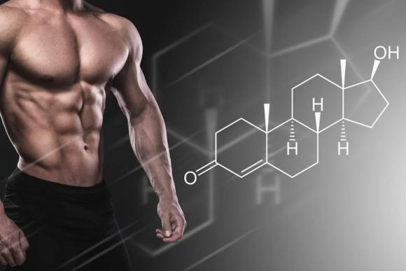 7 важных и интересных фактов о тестостероне