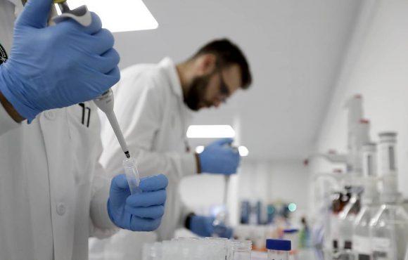 Американские ученые хотят лечить мужское бесплодие стволовыми клетками