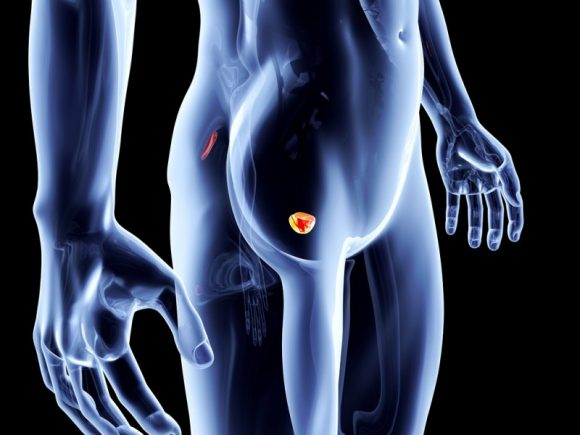 10 фактов о заболеваниях предстательной железы