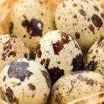 Перепелиные яйца — один из наиболее сильных стимуляторов потенции