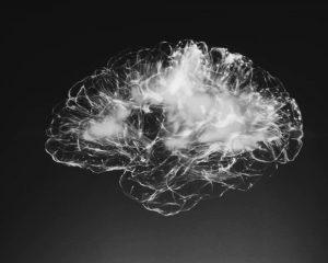 Ученые рассказали, как уровень тестостерона повышает активность мозга
