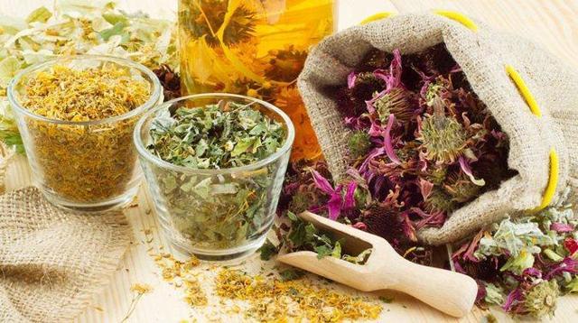 Травы в терапии хронического простатита